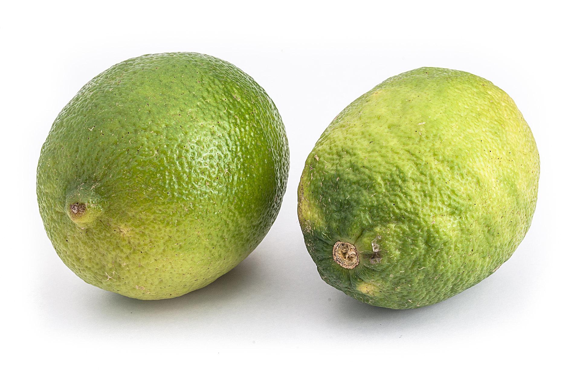 Limette - Citrus × latifolia