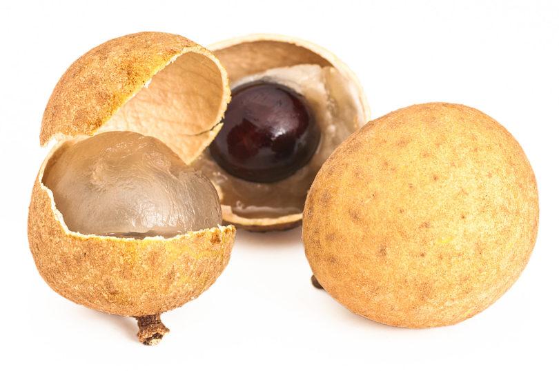 Longan - Dimocarpus longan
