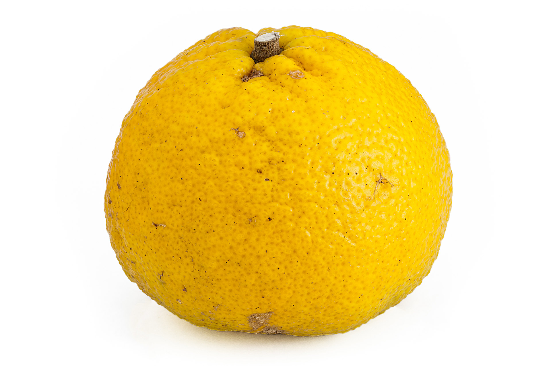 Ugli - Citrus hybrid